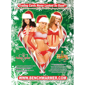 2006 Bench Warmer Holiday Factory Set