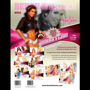 2011SellSheet  - BUBBLEGUM(3)